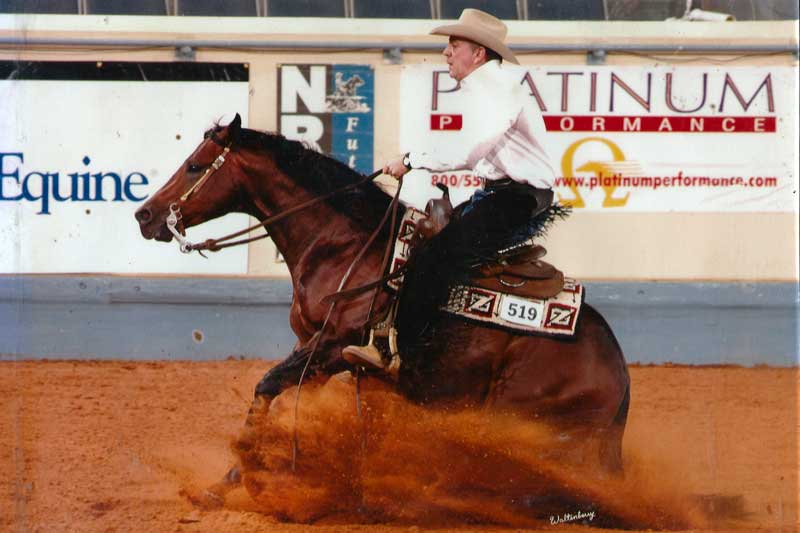 Katona Reining Horses